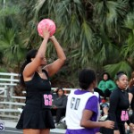 BNA Netball Fast Five Tournament Bermuda Feb 23 2019 (3)