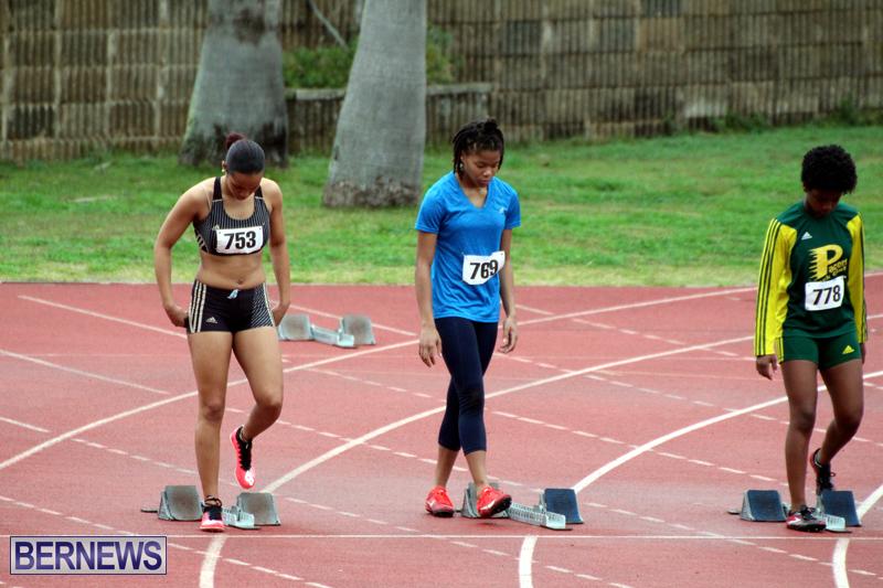 BNAA-Track-Meet-Bermuda-February-17-2019-4