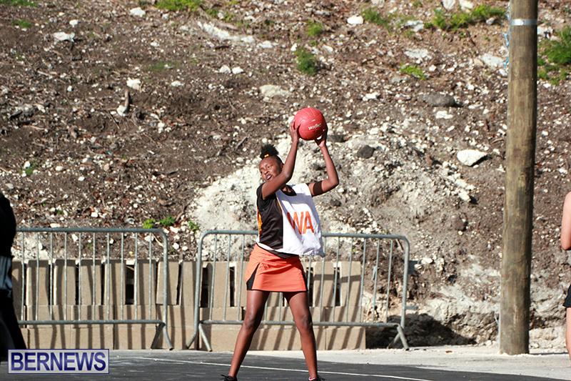 Netball-Bermuda-Feb-6-2019-1
