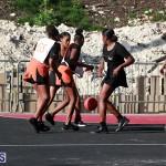 Netball Bermuda Feb 6 2019 (13)