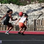 Netball Bermuda Feb 6 2019 (3)