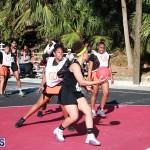 Netball Bermuda Feb 6 2019 (8)