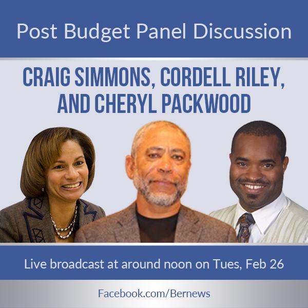 Post Budget Panel Discussion Bermuda Feb 25 2019