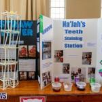 Purvis Primary Science Fair Bermuda, February 21 2019-9265