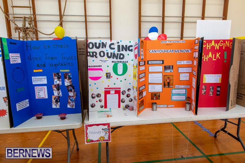 Purvis-Primary-Science-Fair-Bermuda-February-21-2019-9273