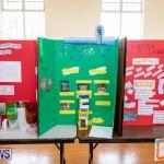 Purvis Primary Science Fair Bermuda, February 21 2019-9275