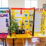 Purvis Primary Science Fair Bermuda, February 21 2019-9277