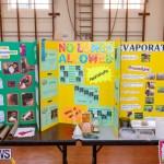Purvis Primary Science Fair Bermuda, February 21 2019-9292