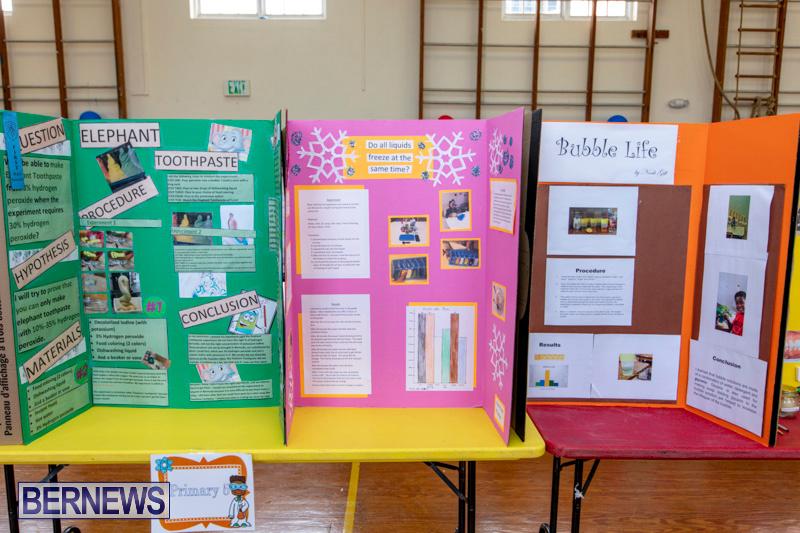 Purvis-Primary-Science-Fair-Bermuda-February-21-2019-9294