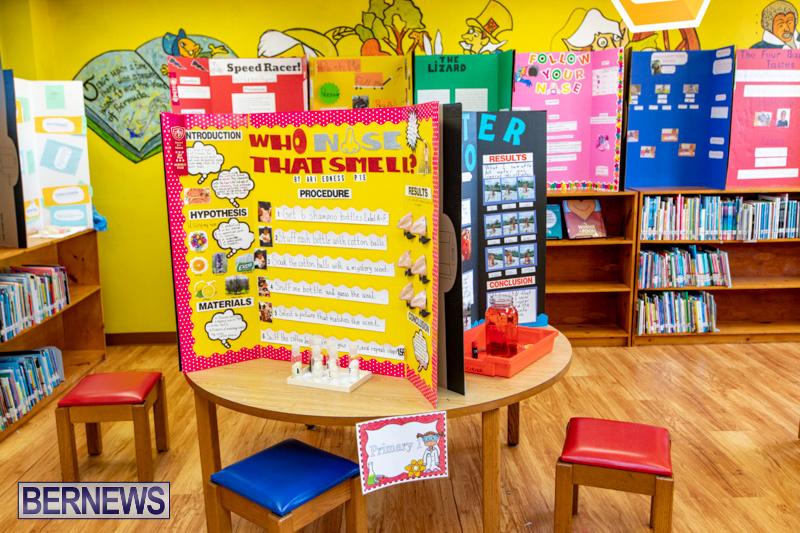Purvis-Primary-Science-Fair-Bermuda-February-21-2019-9304
