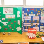Purvis Primary Science Fair Bermuda, February 21 2019-9307
