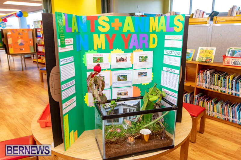 Purvis-Primary-Science-Fair-Bermuda-February-21-2019-9310