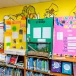 Purvis Primary Science Fair Bermuda, February 21 2019-9311