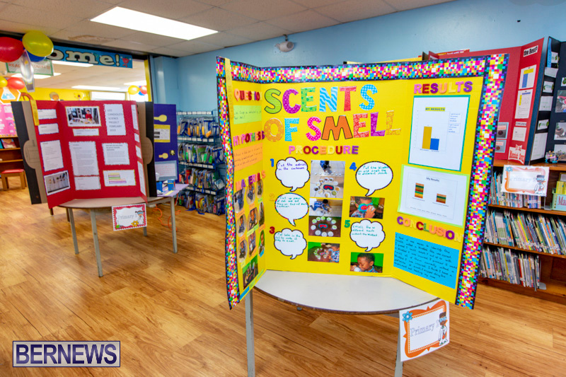 Purvis-Primary-Science-Fair-Bermuda-February-21-2019-9318
