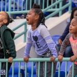 Skyport Magic Mile Bermuda, February 23 2019-9614