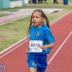 Skyport Magic Mile Bermuda, February 23 2019-9662