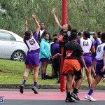 netball Bermuda Feb 13 2019 (9)