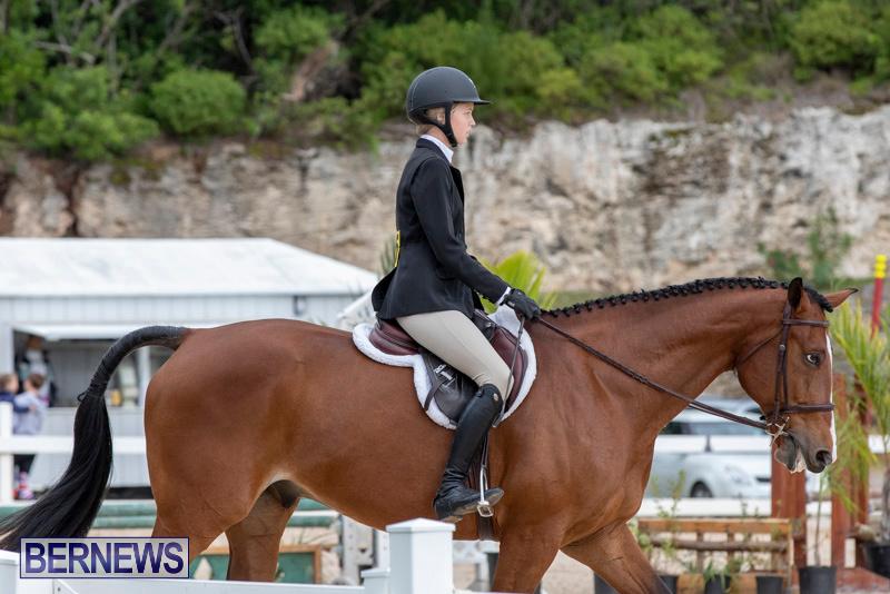 BHPA-Bermuda-Horse-Pony-Association-Spring-Show-March-24-2019-6088