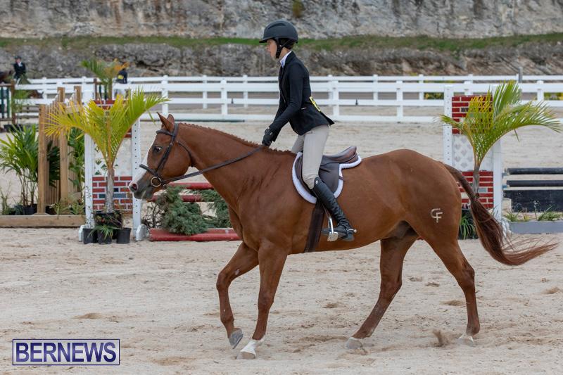 BHPA-Bermuda-Horse-Pony-Association-Spring-Show-March-24-2019-6106