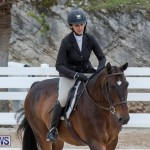 BHPA Bermuda Horse Pony Association Spring Show, March 24 2019-6107