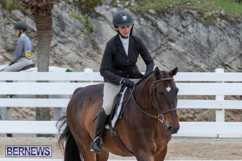 BHPA-Bermuda-Horse-Pony-Association-Spring-Show-March-24-2019-6107