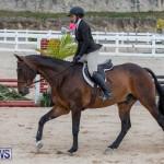 BHPA Bermuda Horse Pony Association Spring Show, March 24 2019-6111