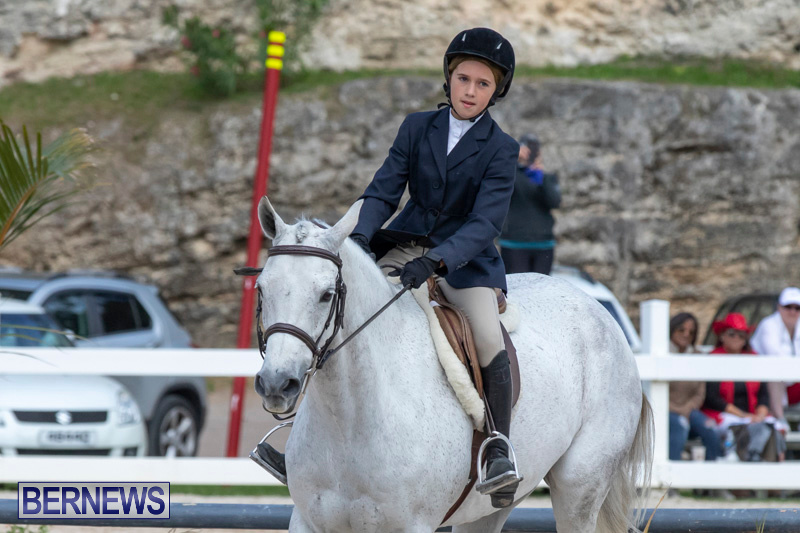 BHPA-Bermuda-Horse-Pony-Association-Spring-Show-March-24-2019-6131