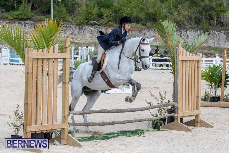 BHPA-Bermuda-Horse-Pony-Association-Spring-Show-March-24-2019-6135