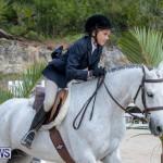 BHPA Bermuda Horse Pony Association Spring Show, March 24 2019-6136