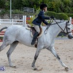 BHPA Bermuda Horse Pony Association Spring Show, March 24 2019-6140