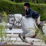 BHPA Bermuda Horse Pony Association Spring Show, March 24 2019-6143