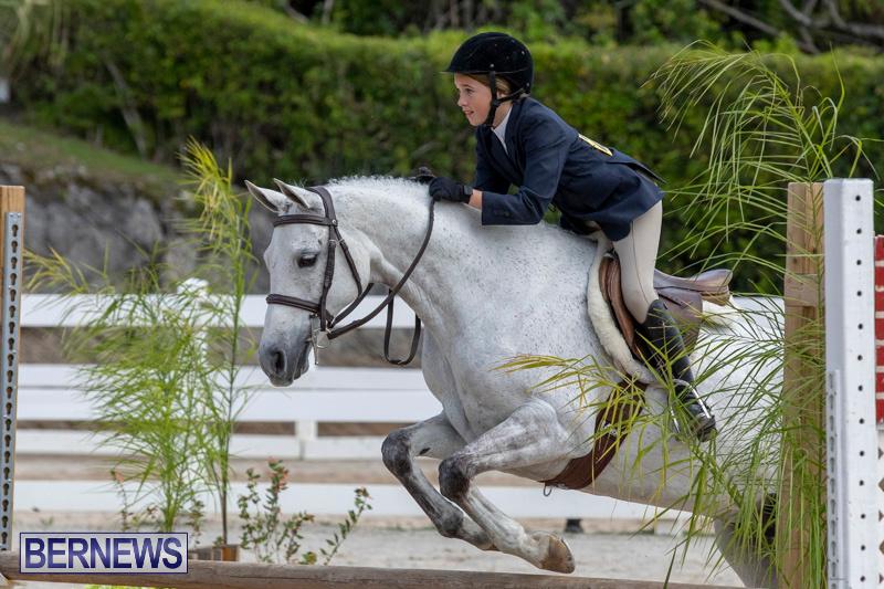 BHPA-Bermuda-Horse-Pony-Association-Spring-Show-March-24-2019-6143