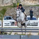 BHPA Bermuda Horse Pony Association Spring Show, March 24 2019-6149