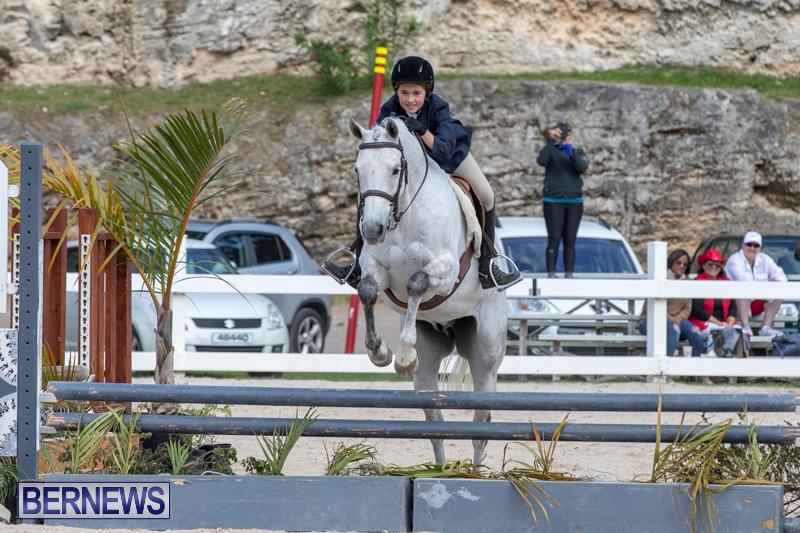 BHPA-Bermuda-Horse-Pony-Association-Spring-Show-March-24-2019-6149