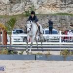 BHPA Bermuda Horse Pony Association Spring Show, March 24 2019-6150