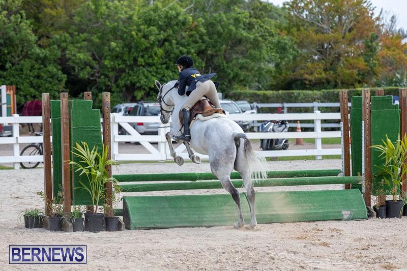 BHPA-Bermuda-Horse-Pony-Association-Spring-Show-March-24-2019-6159