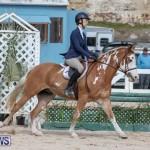 BHPA Bermuda Horse Pony Association Spring Show, March 24 2019-6164