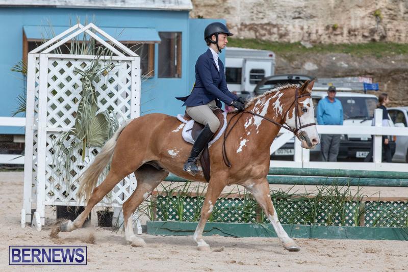 BHPA-Bermuda-Horse-Pony-Association-Spring-Show-March-24-2019-6164
