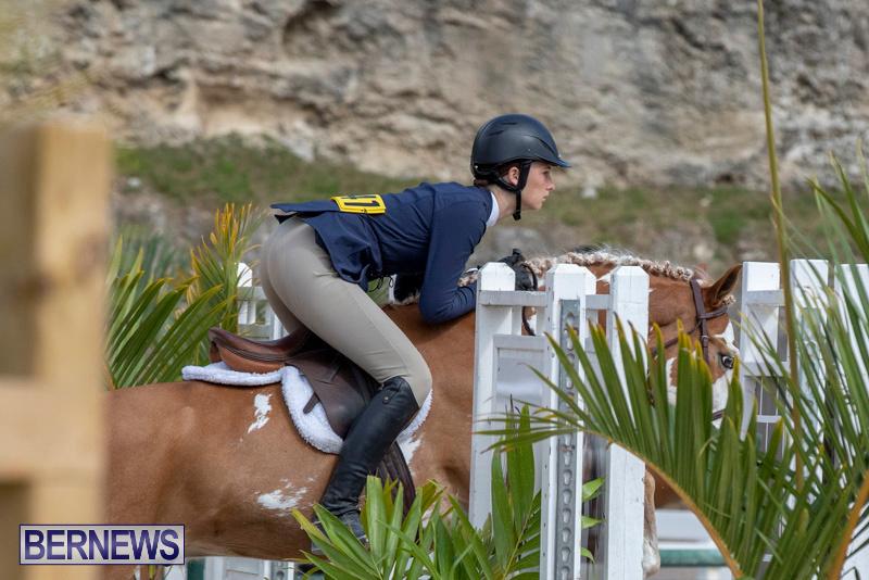 BHPA-Bermuda-Horse-Pony-Association-Spring-Show-March-24-2019-6166