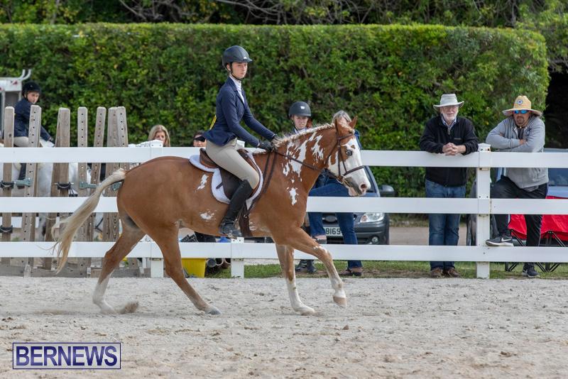 BHPA-Bermuda-Horse-Pony-Association-Spring-Show-March-24-2019-6168