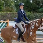 BHPA Bermuda Horse Pony Association Spring Show, March 24 2019-6170