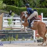 BHPA Bermuda Horse Pony Association Spring Show, March 24 2019-6175