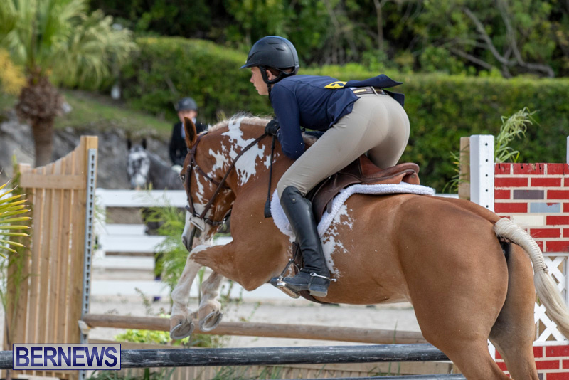 BHPA-Bermuda-Horse-Pony-Association-Spring-Show-March-24-2019-6176