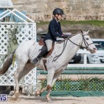 BHPA Bermuda Horse Pony Association Spring Show, March 24 2019-6200