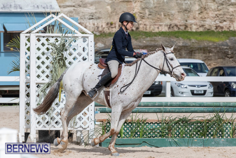 BHPA-Bermuda-Horse-Pony-Association-Spring-Show-March-24-2019-6200
