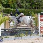 BHPA Bermuda Horse Pony Association Spring Show, March 24 2019-6213
