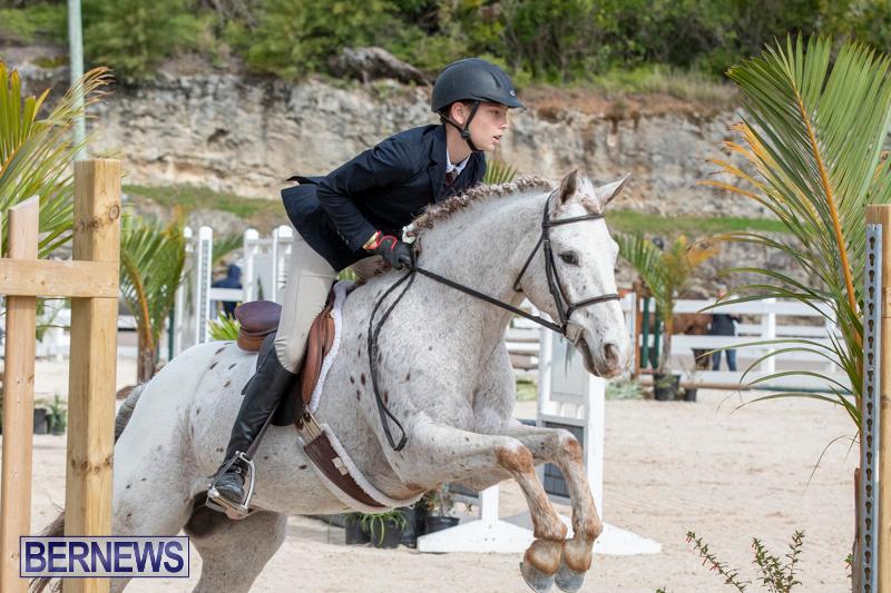 BHPA-Bermuda-Horse-Pony-Association-Spring-Show-March-24-2019-6216