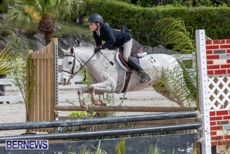 BHPA-Bermuda-Horse-Pony-Association-Spring-Show-March-24-2019-6224