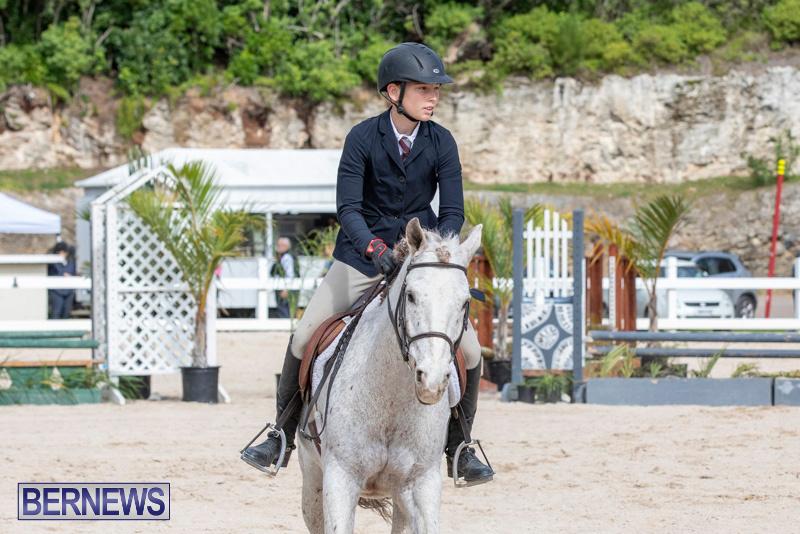 BHPA-Bermuda-Horse-Pony-Association-Spring-Show-March-24-2019-6236