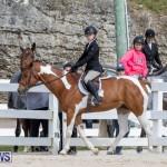 BHPA Bermuda Horse Pony Association Spring Show, March 24 2019-6244